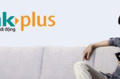 dich vu bankplus 236x157 - Dịch vụ Bankplus đang được người dùng sử dụng rộng rãi bao gồm những gì?